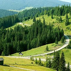 "фото ""Mountain road"""