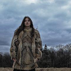 "фото ""Oдинокая волчица"""