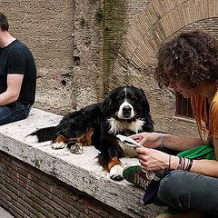 """фото """"Фотодуэль. Трое в кадре, не считая собаки :)"""""""