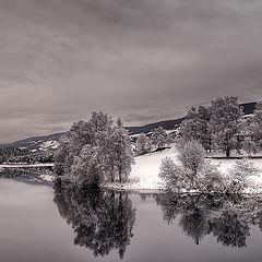 "фото ""Black and White"""