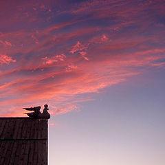 "photo ""Крыша в Суздале"""