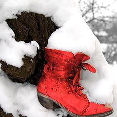 "photo ""зимен натюрморт"""