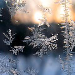 "фото ""Фотодуэль. Зима нарисовала."""