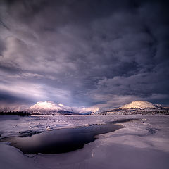 "фото ""Cold....."""