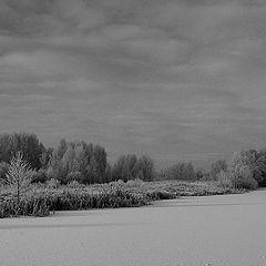 """фото """"Зимой"""""""