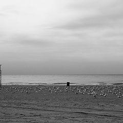 "фото ""deserted"""