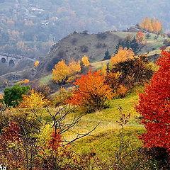 """фотоальбом """"Praha, autumn 2011"""""""