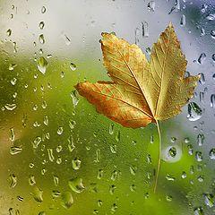"""photo """"Tears of Autumn ..."""""""