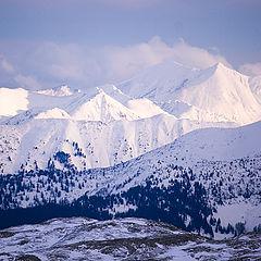 """photo """"Alps"""""""