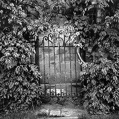 """фото """"Калитка. Феодосия. 1980г."""""""