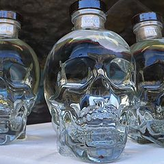 "photo ""vodka skulls"""
