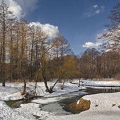 "photo ""March Goledyanka-river"""