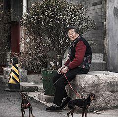 """фото """"дама с собачками..."""""""