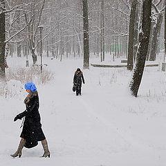 """фото """"*** ( Городской парк зимой)"""""""