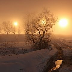 """photo """"Winter. Night. Fog. The Moon ... the unreality of finding"""""""