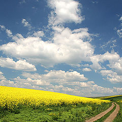 "фото ""Way through the hills"""