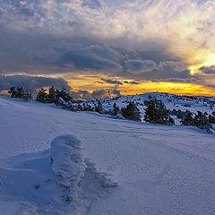 """фото """"Почти субтропический закат..."""""""