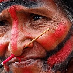 """фото """"Indian Mamaindê"""""""