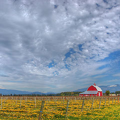"photo ""Country landscape. Rancho."""
