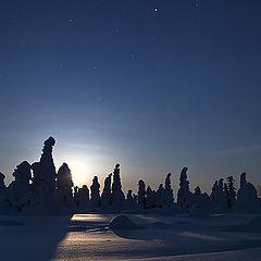"""фото """"Луна и звезды.Северная ночь."""""""