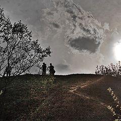 "фото ""В контровом солнце..."""