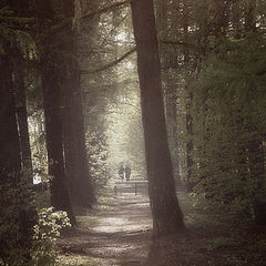 "фото ""В лесу"""