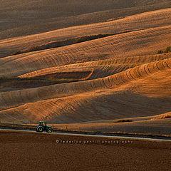"photo ""The Fields"""