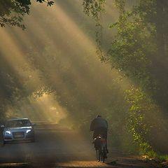 "фото ""bike ride to work"""