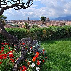 "фото ""Florence"""