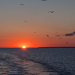 """фото """"восход, 4 утра"""""""