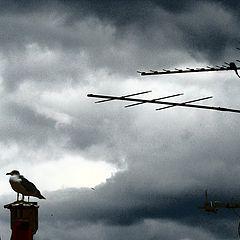 "photo ""time of rain"""