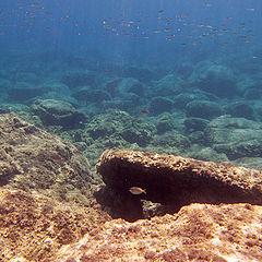 """photo """"Underwater Rhodos"""""""