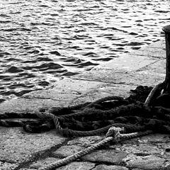 """photo """"il the port"""""""