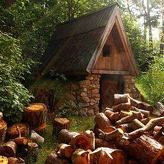 "photo ""Funny firewood"""
