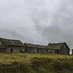 "фото ""The old farm"""