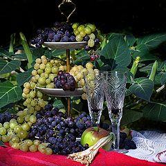 """фото """"Дурман и виноград"""""""