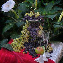 """фото """"Дурман и виноград-2"""""""