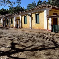 "фотоальбом ""SANTA GERTRUDES Farm - Brazil"""
