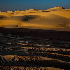 """фото """"Dunes 06"""""""