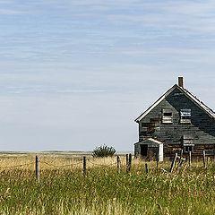 "фото ""Prairie life"""