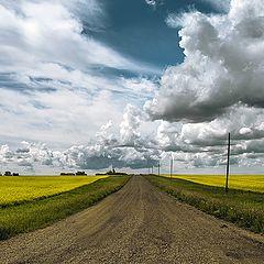"""фото """"Prairie back roads"""""""