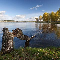 "фото ""Черноисточинский пруд / 0182_0020"""