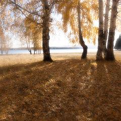 """фото """"Осень / 0189_0183_monocle"""""""
