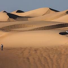 "фото ""Among the Dunes"""