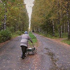 """фото """"Осенний путь"""""""