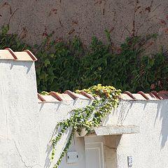 "photo ""summer's corner"""