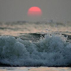 "фото ""Morning light"""