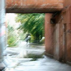 "photo ""Two and rain"""