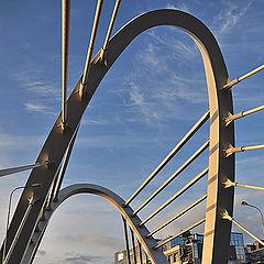"фото ""Лазаревсий мост(Санкт-Петербург)"""