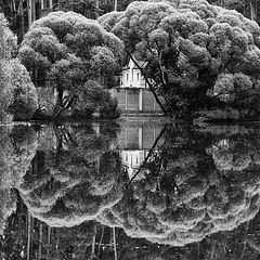 """фото """"зеркальная сказка"""""""